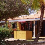 Tauchshop Relaxed Guided Dives Tauchen auf Curacao